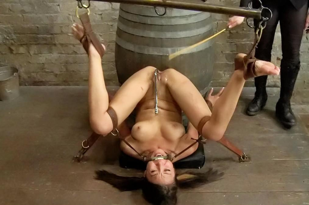 Free download bondage video